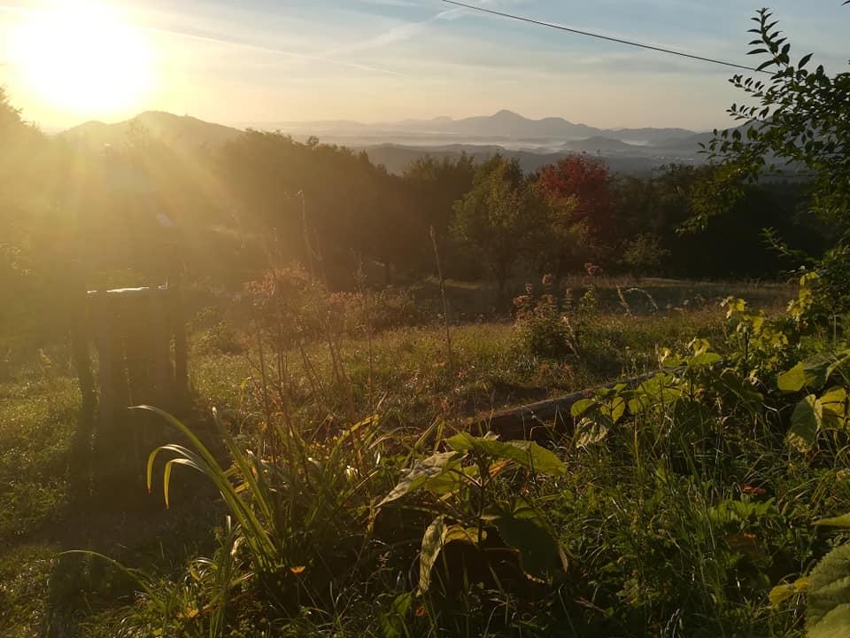Dan odprtih vrat na Domačiji Mokovec / Open day at Mokovec farm